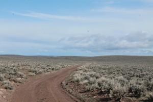 Road through sage grouse lek in Slaughterhouse, TM Ranch, Idaho